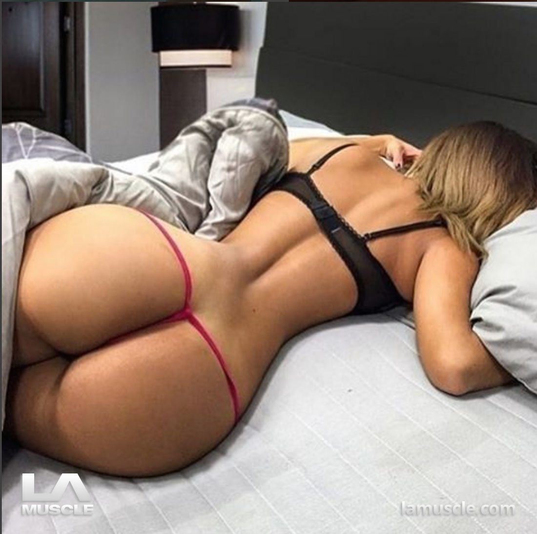 trained ass
