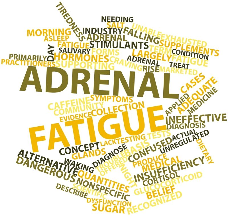 Cortisol and Adrenal Fatigue