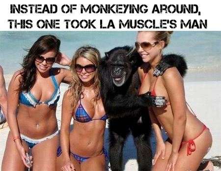 Funny fitness gym bodybuilding photos and pics