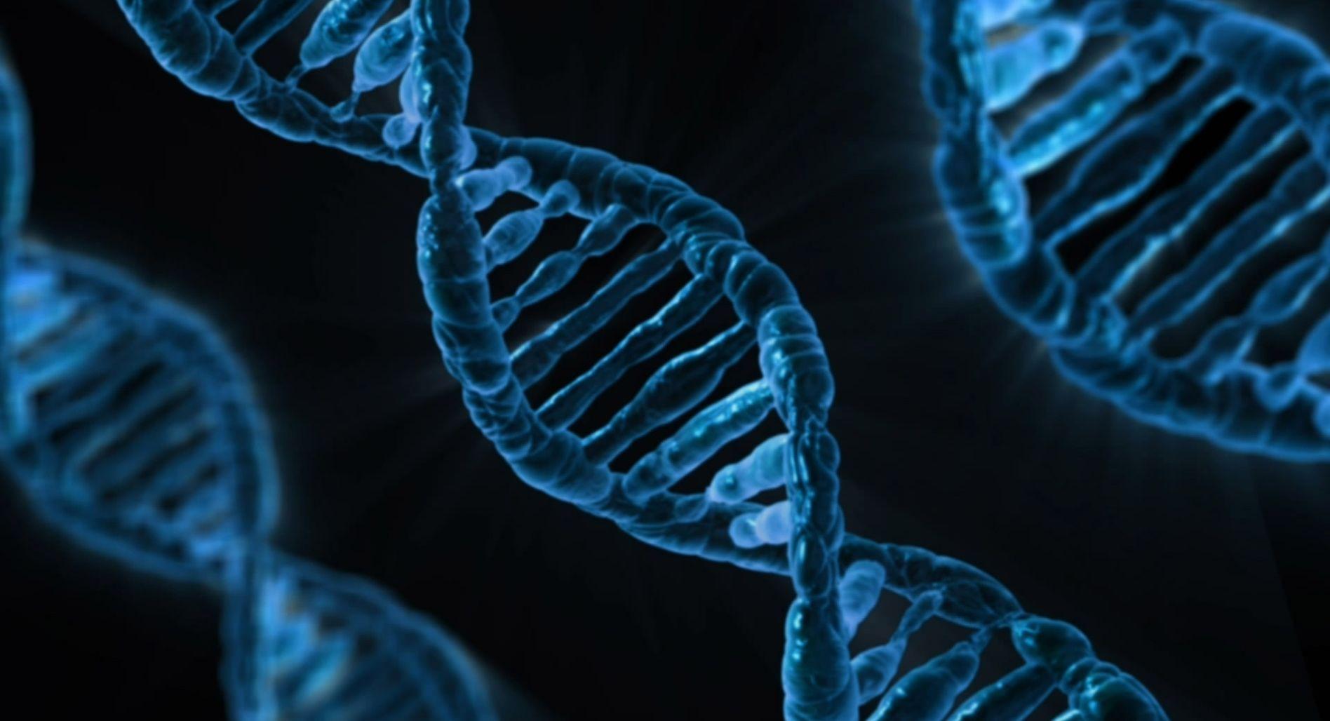 Эх гены гены порно 20 фотография